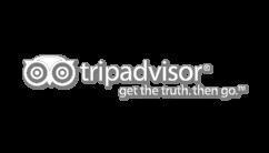 tripadvisor discussion